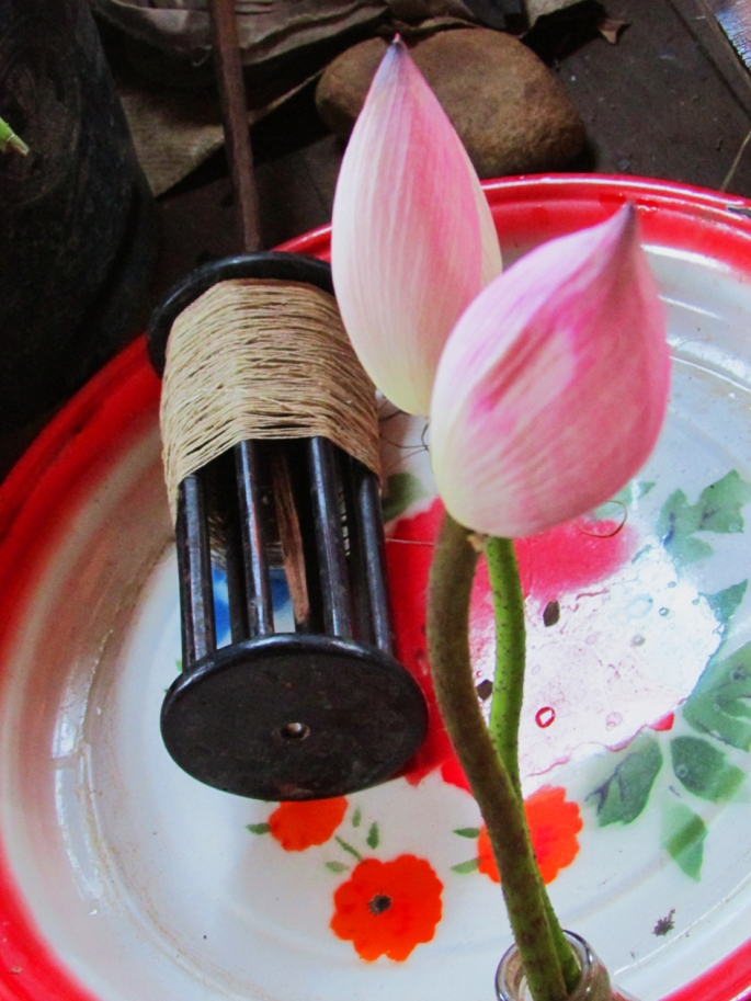 Lotus and fiber