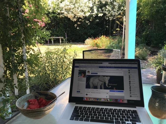 Summer Writing Outside